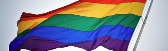 wpid-mntsdcardDownloadgay-pride-1-1.png.png