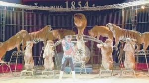 chateaubriant-deux-representations-du-cirque-pinder-mercredi-9c2a0octobre0