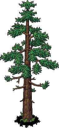 dino_c15_tree2_64_0_0