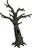 hween_c15_tree
