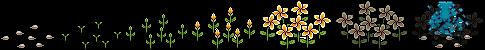 flower_jungle