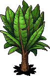 jungle_c16_plant_64_0_0