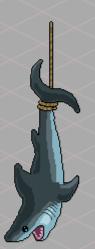 js_r16_shark